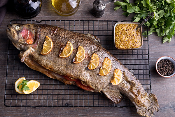 Форель – дорогая рыба, на производстве которой можно хорошо заработать
