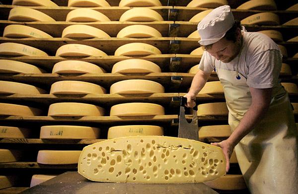 Мини - производство сыра